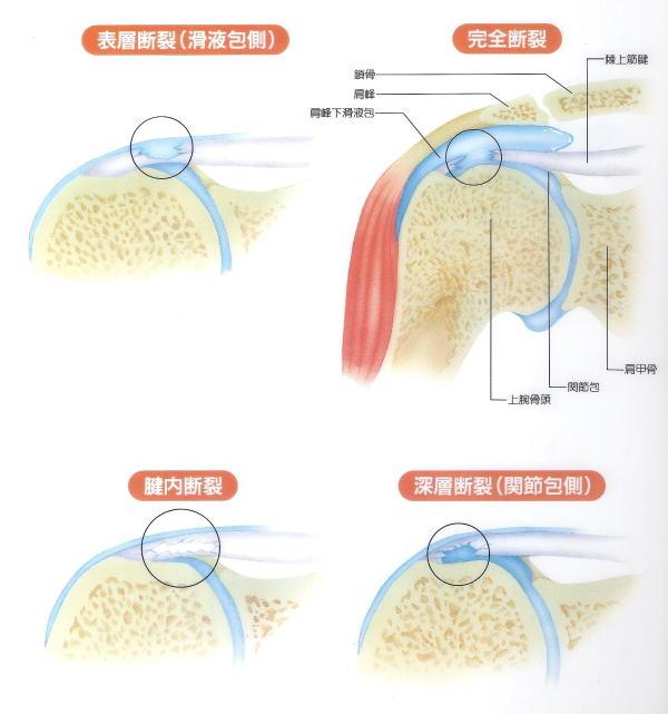 西東京市の整形外科クリニック。千賀整形外科です。